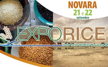 Exporice A Novara